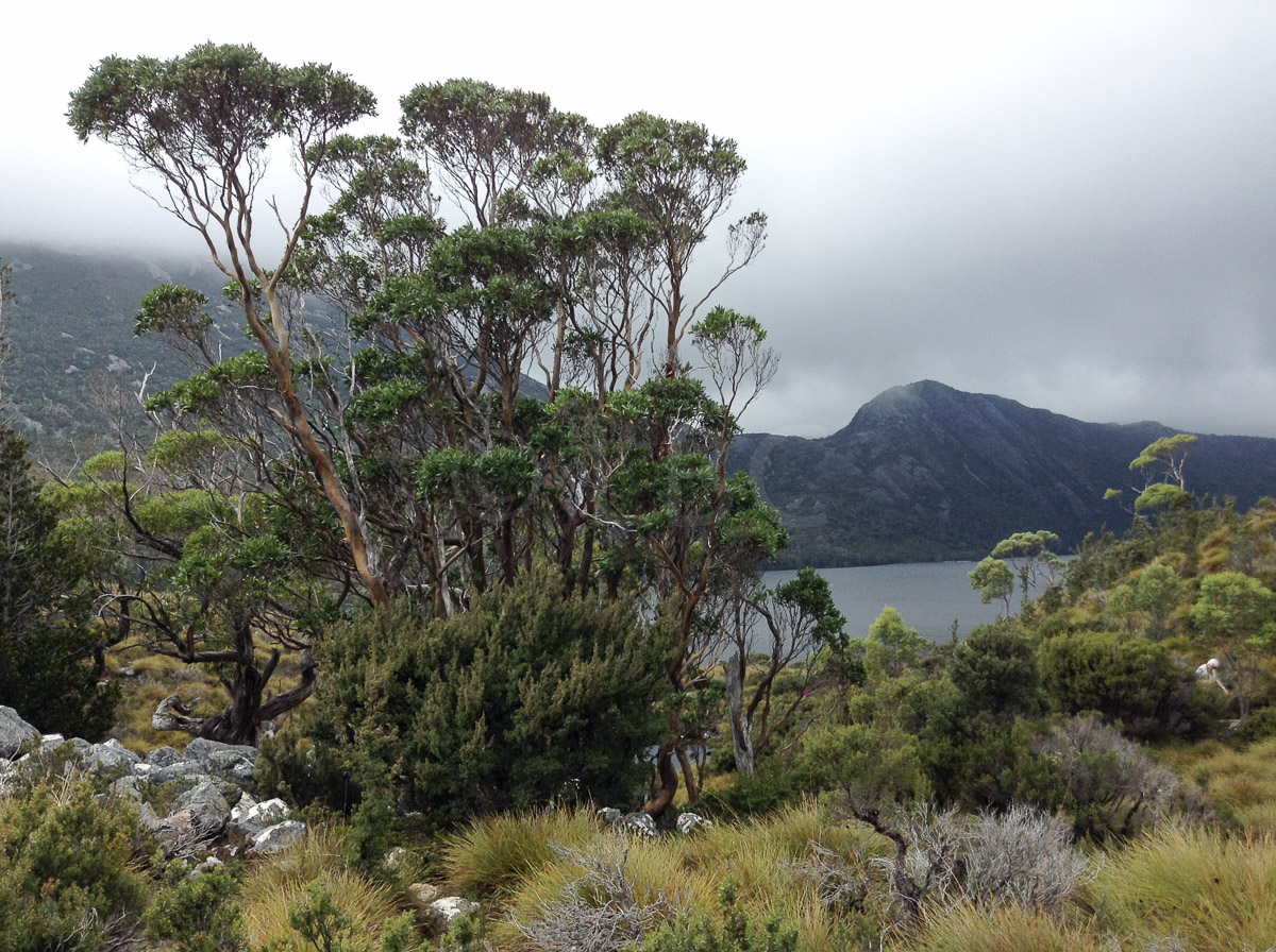Tasmania : Mountains and Lakes