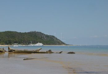 Tangalooma Laughs